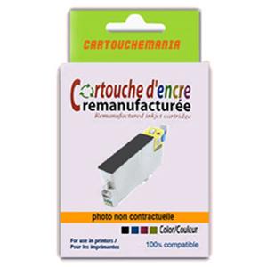 cartouche d'encre CM-PK-T0801-PUCE-APRES-122007.jpg